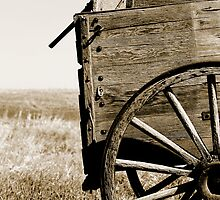 Antique Wooden Wagon in a Field by rhamm