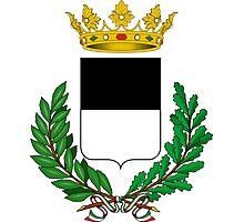 Coat of Arms of ferrara Photographic Print