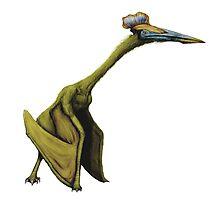 Hatzegopteryx Photographic Print