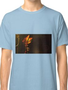 backlit leave during sunset  Classic T-Shirt