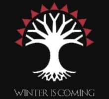 Winter Is Coming by Pokerus