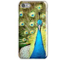 beautiful  Peacock iPhone Case/Skin
