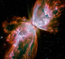 The Butterfly Nebula by StocktrekImages