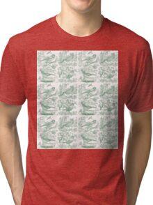 Garden Birds - Pale Green Tri-blend T-Shirt