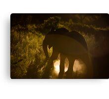 Elephants South Africa Endangered Canvas Print