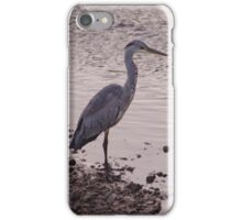 Heron and Grey Water iPhone Case/Skin