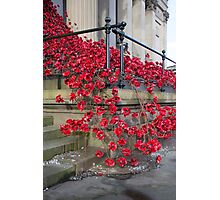 St Georges Poppies Photographic Print