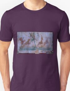 A Frescoe In Ancient Pompeii T-Shirt