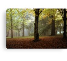 Fantasia - Mount Wilson NSW - The HDR Experience Canvas Print
