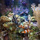 Marine Aquarium by John Dalkin