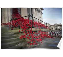 St Georges Hall Poppies Poster