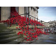 St Georges Hall Poppies Photographic Print