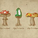 Mario Mycology by digsy