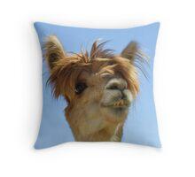 Alpaca Throw Pillow - Hair Throw Pillow
