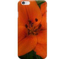 Hot Orange Lily  iPhone Case/Skin