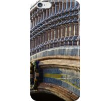 Colors of sunset iPhone Case/Skin