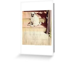 Where Are You?   by Denise Sallee Greeting Card