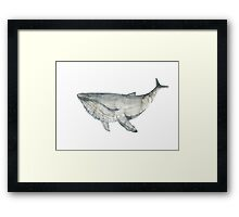 Whale silver. Watercolor illustration. Framed Print