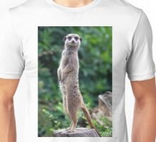 Tippy Toes Unisex T-Shirt