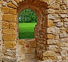 Sherborne Old Castle (4) by kalaryder