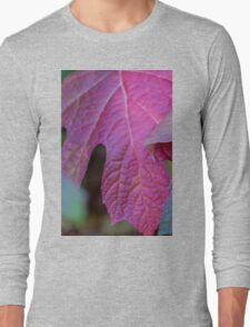 leaves in autumn Long Sleeve T-Shirt