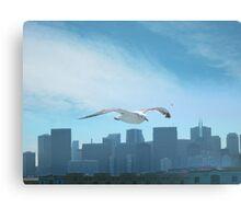 Gull San Francisco Canvas Print