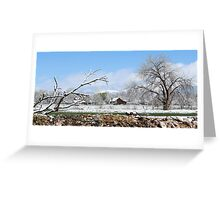 Spring snowstorm in the mountains Greeting Card