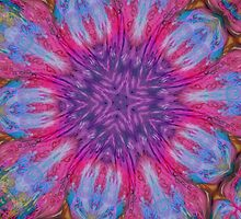 Pretty Fractal 2 by Tori Snow