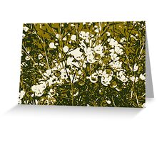 Wax flower field Greeting Card