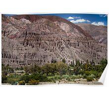 Salta Landscape Poster
