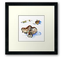 Watercolor nature collection.  Framed Print