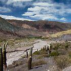 Salta Landscape V by DianaC
