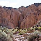 Salta Landscape III by DianaC