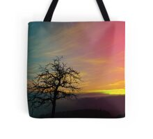 Old tree and colorful sundown panorama   landscape photography Tote Bag