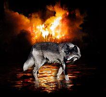 """""""Survivor"""" Grey Wolf & Burning Forest Fire by Val  Brackenridge"""