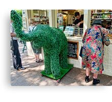 The Elephant in the Tearoom Canvas Print