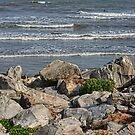 Galveston  Texas, USA by Mike Pesseackey (crimsontideguy)