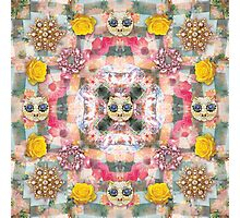 cat gemsplosion Photographic Print