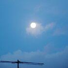 Morning Moon   by lezvee