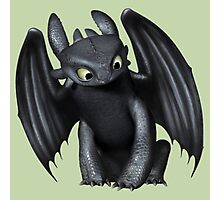 How To Train Your Dragon 6 Photographic Print