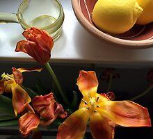 Stil leben in Orange and Yellow by HeklaHekla