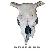 Old Cow Skull tee Photographic Print