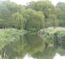 River with willow trees by Xanthia94