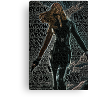 Captain America: The Winter Soldier, Black Widow Poster with text Canvas Print