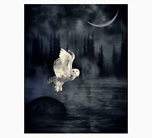The owl and her mystical moon Unisex T-Shirt