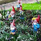 Gardenparty Invitation VRS2 by vivendulies