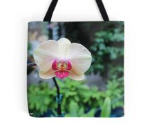 Orchid from Washington DC Tote Bag