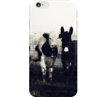 Cow and donkey, best friends iPhone Case/Skin