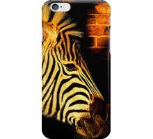 Low Light Zebra iPhone Case/Skin