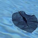 Floating frailty by iamelmana